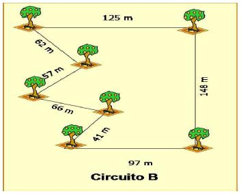 Circuito B